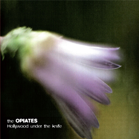 <h5>Wolfgang Tillmans. <em>Untitled</em>, (2006). Photograph. On cover of The Opiates CD <em>Hollywood under the knife</em>, (2011).</h5><br>